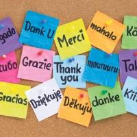 Kasvatus Japanin ulkopuolella ja kaksikielisyys vanhemman näkökulmasta